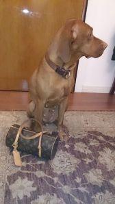 Am Abflugtag hatte sie schon seit Stunden gepackt und konnte die Reise kaum erwarten.