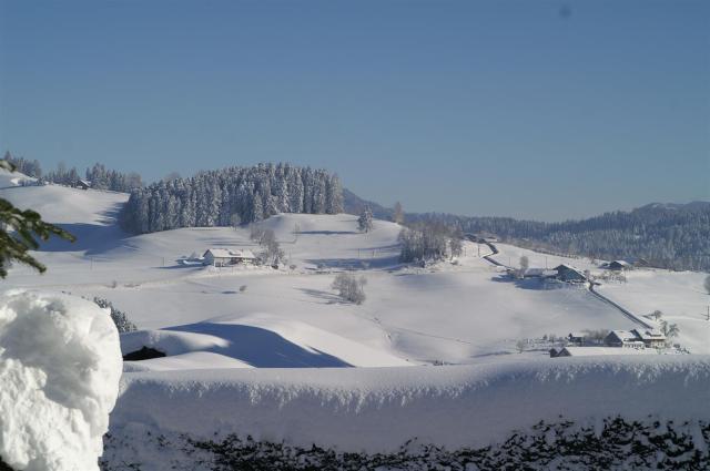 Winter in Oberreute./Enjoying some winter days in Oberreute.