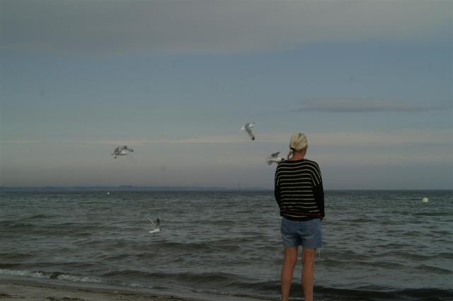 Lübecker Bucht./At the Baltic Sea.