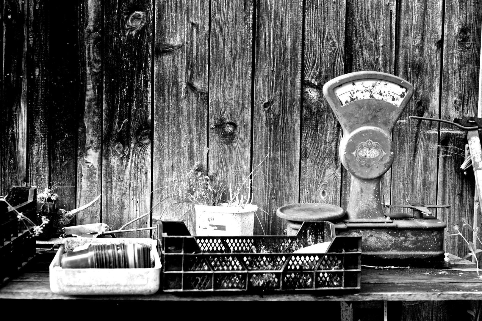 Sommerküche Hildegard Von Bingen : Hildegards sommerküche sl lifestyle u sabines magazin für reisen