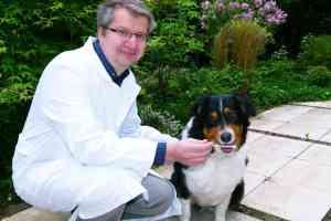 DNA-Tests für Hunde