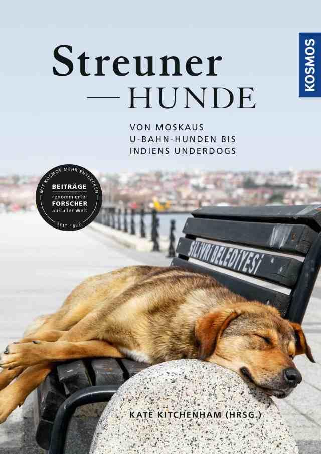 Kitchenham_Streunerhunde_U1_cover-jpg.indd